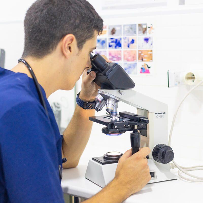 centre-veterinari-salou-analisis-clinic