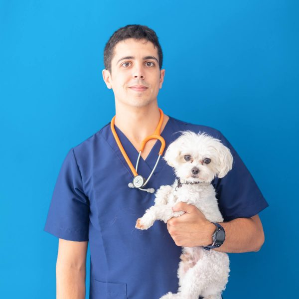 cvet-salou-veterinari